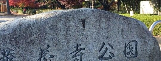 華蔵寺公園 is one of 日本の都市公園100選.