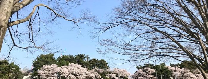 栃木県総合運動公園 テニスコート is one of Tennis Court relates on me.