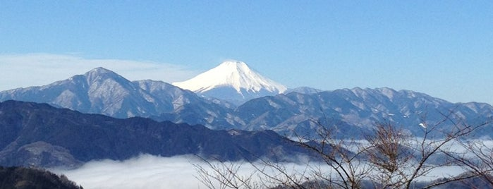 Top of Mt. Takao is one of Nature.