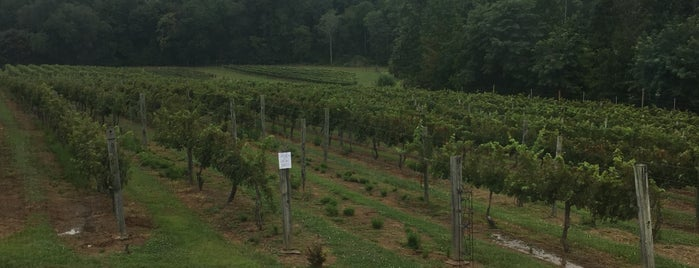 White Rock Vineyards is one of Bedford Wine Trail.