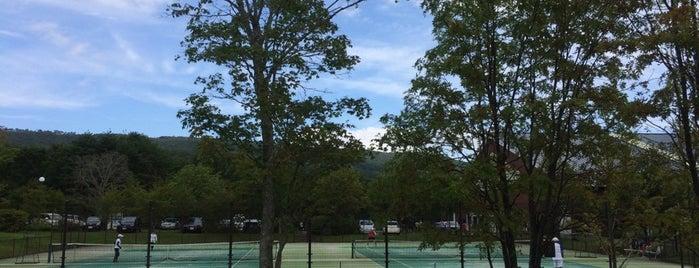 羽鳥湖高原レジーナの森 テニスコート is one of Tennis Court relates on me.