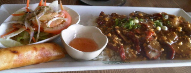 Thai-siam is one of Oakville/Burlington to-do, eat and visit.