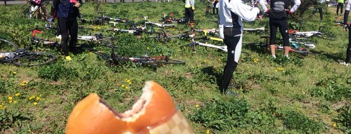 吉野公園 is one of サイクリング.