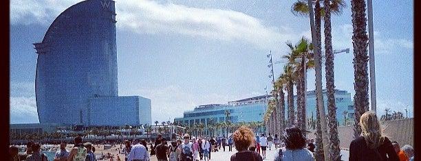 Barceloneta Beach is one of Barcelona.