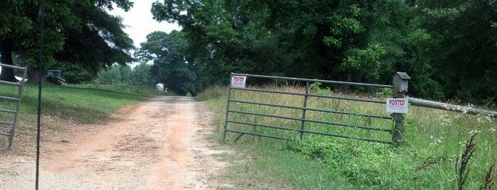 TWD Hershel's Farm is one of The Walking Dead.