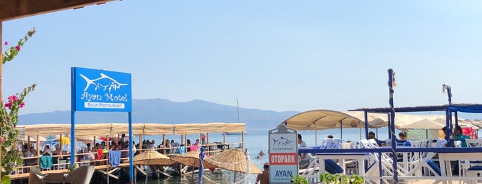 AYAN beach Club is one of doğallık..