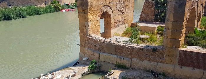 Puente de los Peligros is one of cosas hechas.