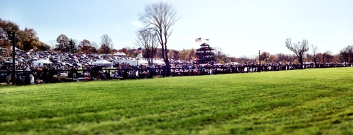Moorland Farm - The Far Hills Race Meeting is one of My Favorite Things.