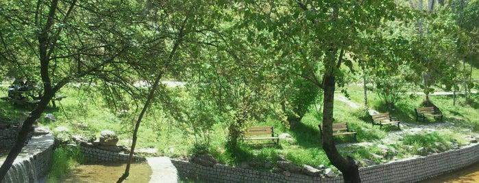 Botanik Parkı is one of Özledikçe gideyim - Ankara.