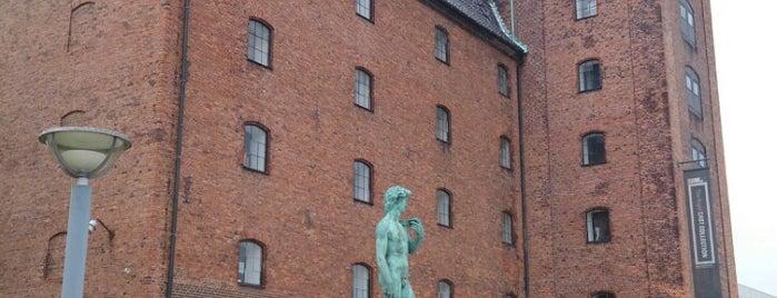 Den Kongelige Afstøbningssamling is one of København.
