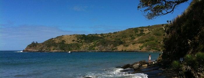 Praia Brava is one of Brasil.