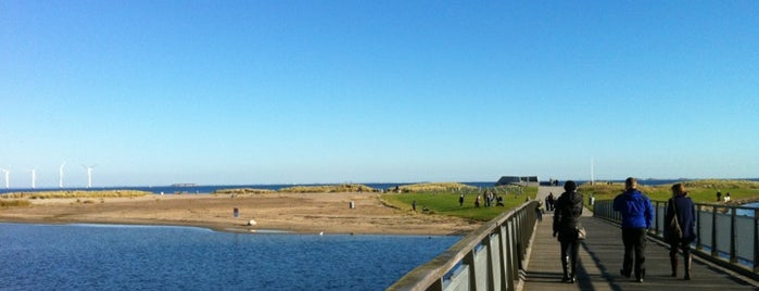 Amager Strandpark is one of København: My Shopping, outdoors & chill spots!.