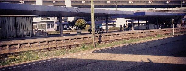 Ludwigshafen (Rhein) Hauptbahnhof is one of Ausgewählte Bahnhöfe.