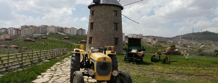 Altınköy Açık Hava Müzesi is one of Ankara.