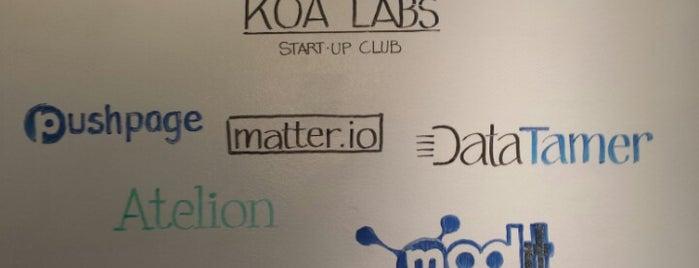 Koa Labs is one of Boston Tech.