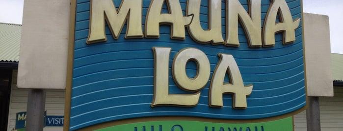 Mauna Loa Macadamia Nut Visitor Center is one of Big Island.