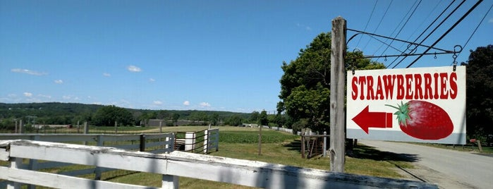 Rogers Spring Hill Farm is one of Haverhill.