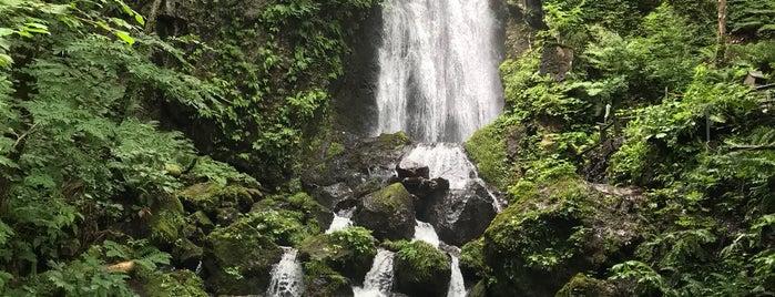不動の滝 is one of 日本の滝百選.