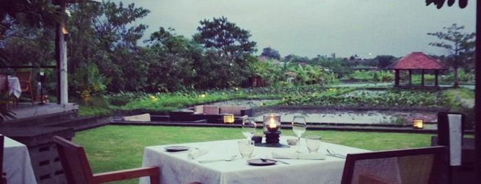 "Métis is one of Bali ""Jaan"" Culinary."