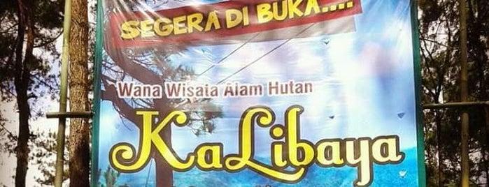 Puncak Tinggi Gunung Lio is one of Kota Brebes (Decorate of Java) #4sqCities.