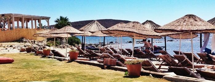 Alaçatı 11 Beach Club is one of Alaçatı'nın En İyileri / Best of Alacati.