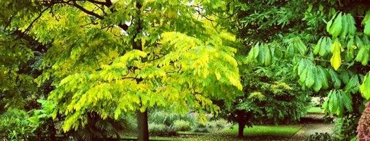 University of Oxford Botanic Garden is one of Oxford.