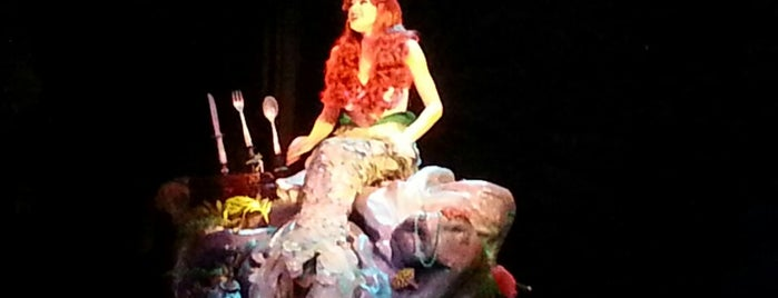 Voyage of The Little Mermaid is one of Walt Disney World.