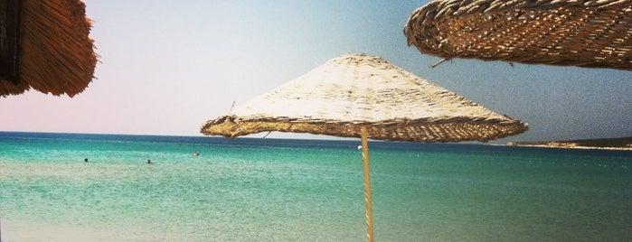 Alaçatı Beach Resort is one of İzmir.