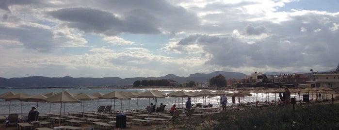 Elena Beach Hotel is one of Cruising Thru Crete.