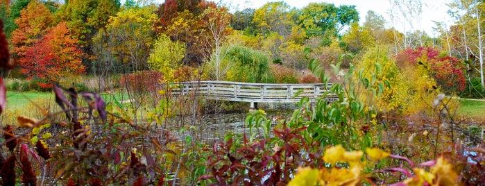 Grant Woods Forest Preserve Lake Villa Il