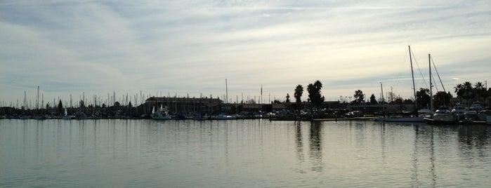 Island Yacht Club is one of Bay Area Yacht Clubs.
