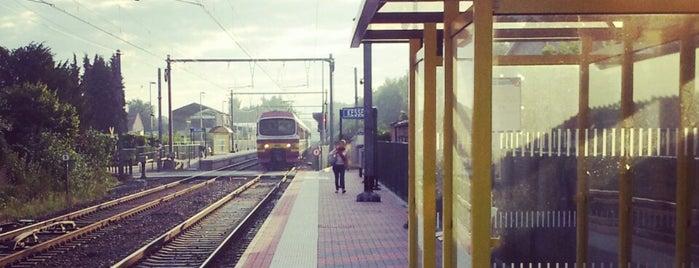 Station Kessel is one of Bijna alle treinstations in Vlaanderen.