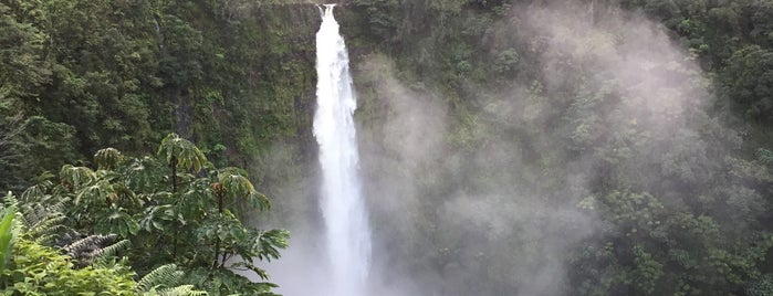 Akaka Falls is one of Enjoy the Big Island like a local.