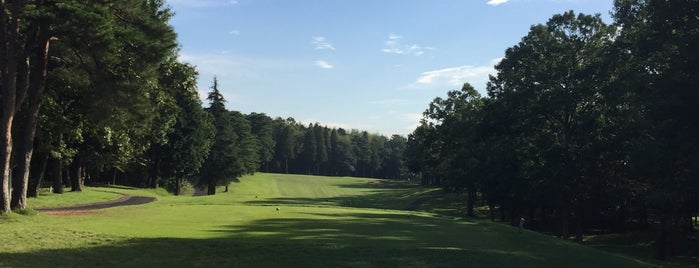 Edosaki Country Club is one of Top picks for Golf Courses.