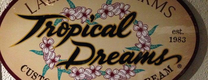 Tropical Dreams is one of Big Island.