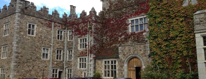 Waterford Castle Hotel & Golf Resort is one of Historic Hotels to Visit.