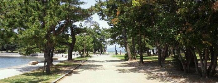 Odo Park is one of Fukuoka.