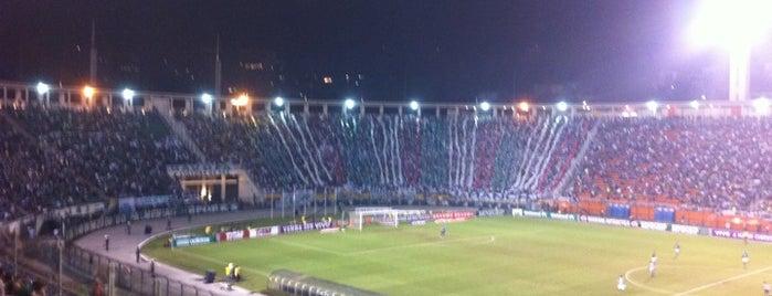 Estádio Municipal Paulo Machado de Carvalho (Pacaembu) is one of SP.
