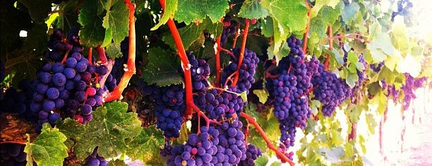 Sonoma Valley is one of West Coast.