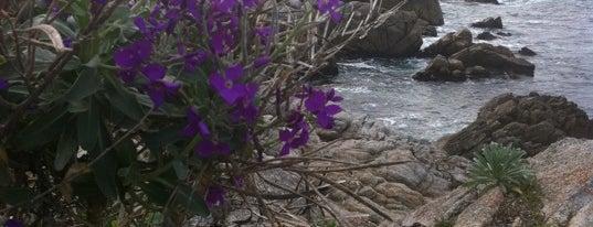 Monterey Bay Coastal Trail is one of West Coast.