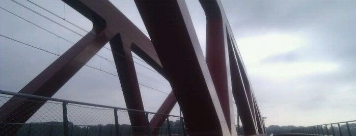 Hanzeboog is one of Bridges in the Netherlands.