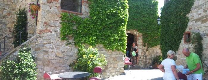 Azienda Agricola Livernano is one of Chianti Classico Producers.