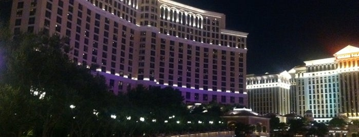 Bellagio Hotel & Casino is one of Best Places to Check out in United States Pt 3.
