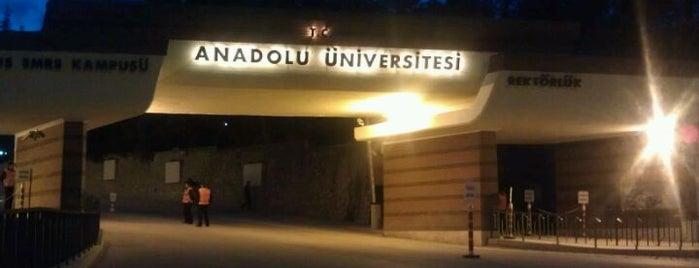 Anadolu Üniversitesi is one of my favorites.
