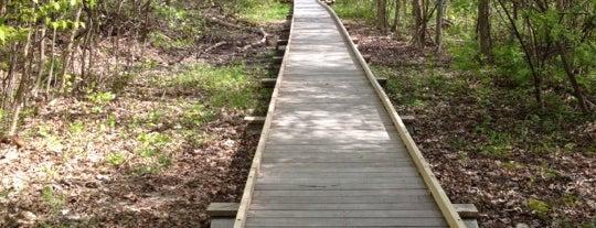 Mass Audubon Broad Meadow Brook is one of WOOCard Venues.