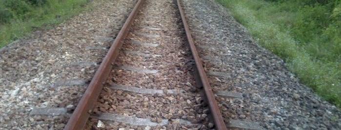 Former KTM Railway Trackbed (Gombak) is one of Trek Across Singapore.