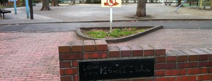 原っぱ公園 is one of 公園.