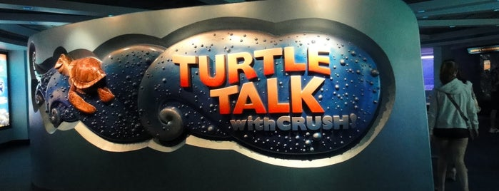 Turtle Talk with Crush is one of Walt Disney World - Epcot.