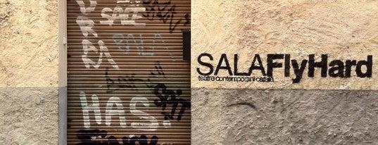Sala Flyhard is one of Sants Mola!.
