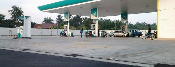 Petrol,Diesel & NGV Station